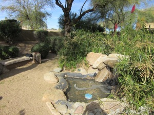 Scottsdale Bible Church Prayer Garden